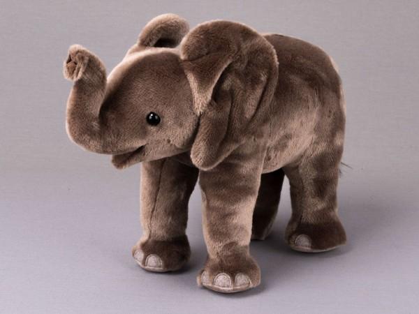 """Elefantenbaby """"Tembo"""", stehend"""