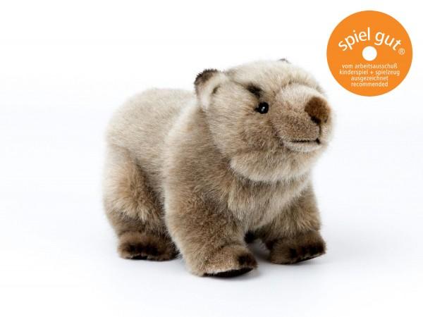 Wombat Kind