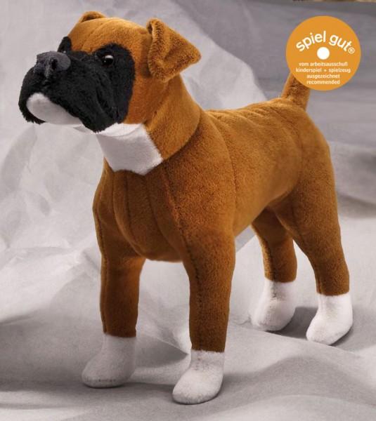 Boxer (Minitier)