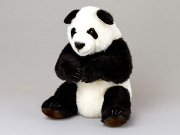 """Panda """"Maya"""""""