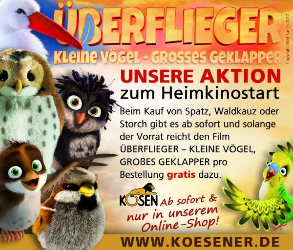 Facebook-Koesen-Aktion-berflieger