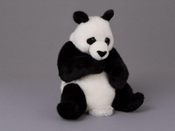 Panda, sitzend