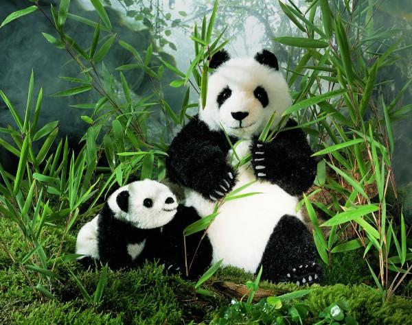 Panda, Alpaca, limitiert