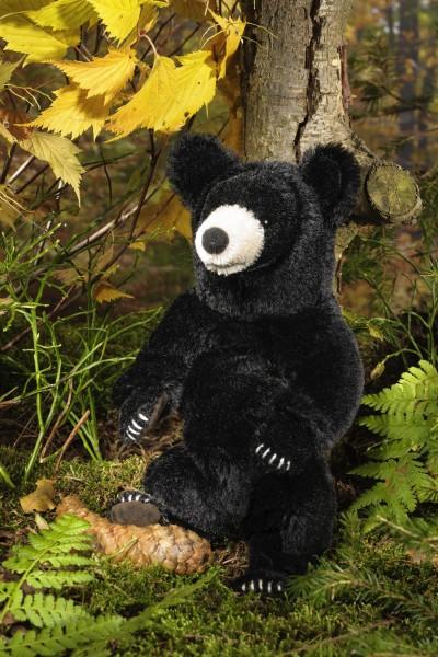 Schwarzbär, klein, limitiert