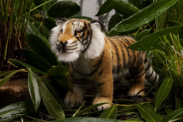 "Tiger ""Kadan"", klein"