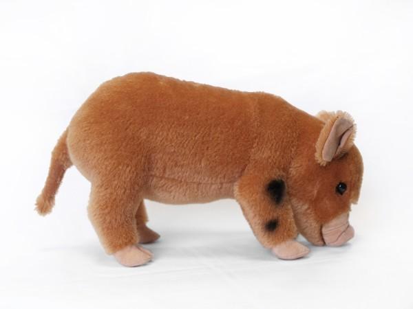 Micro Pig Mohair, rotbraun-weiß