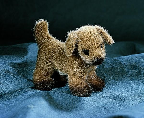 Hund (Minitier)