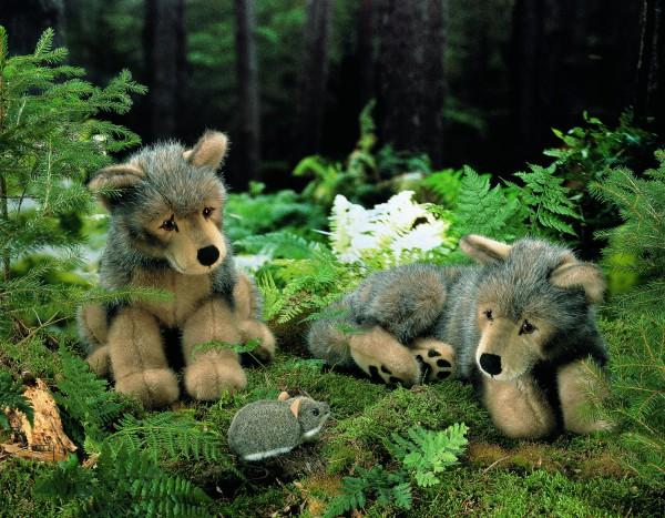 "Wolfswelpe ""Kolja"", liegend"