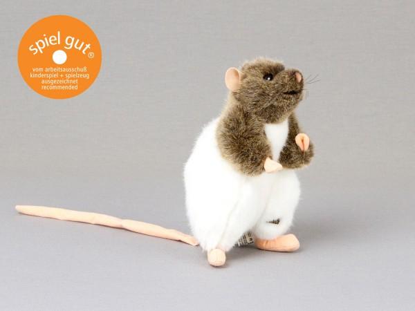 """Ratte """"Rasumowski"""", braun/weiß, aufrecht"""