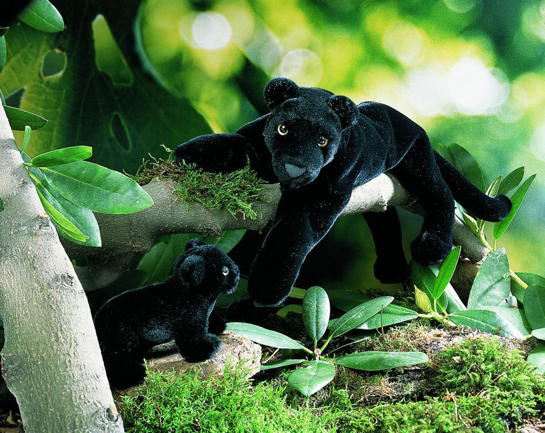 слоны и пантеры картинки