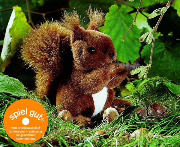Eichhörnchen, klein