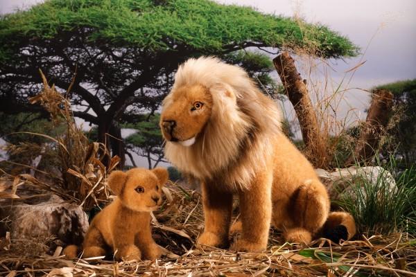 Löwenbaby sitzend