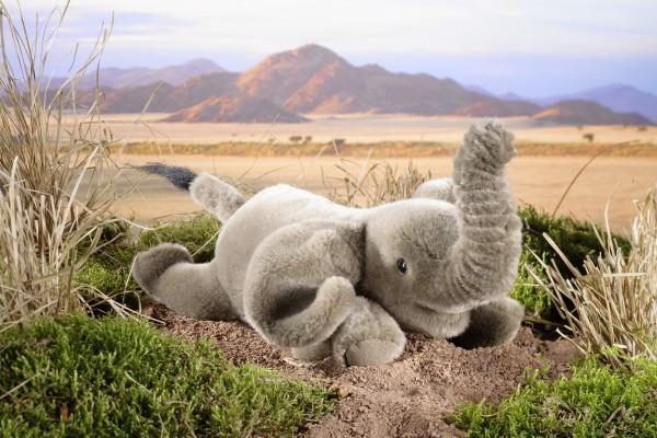 Elefant, klein, liegend